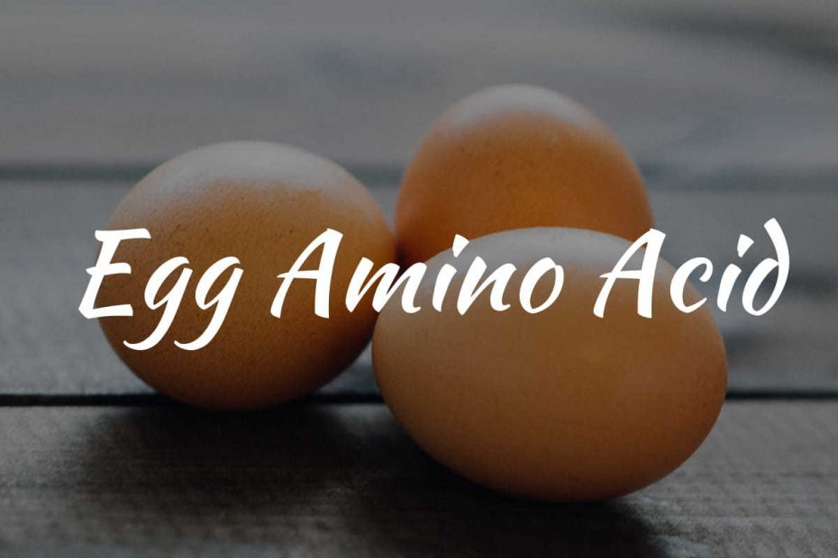 egg amino acid