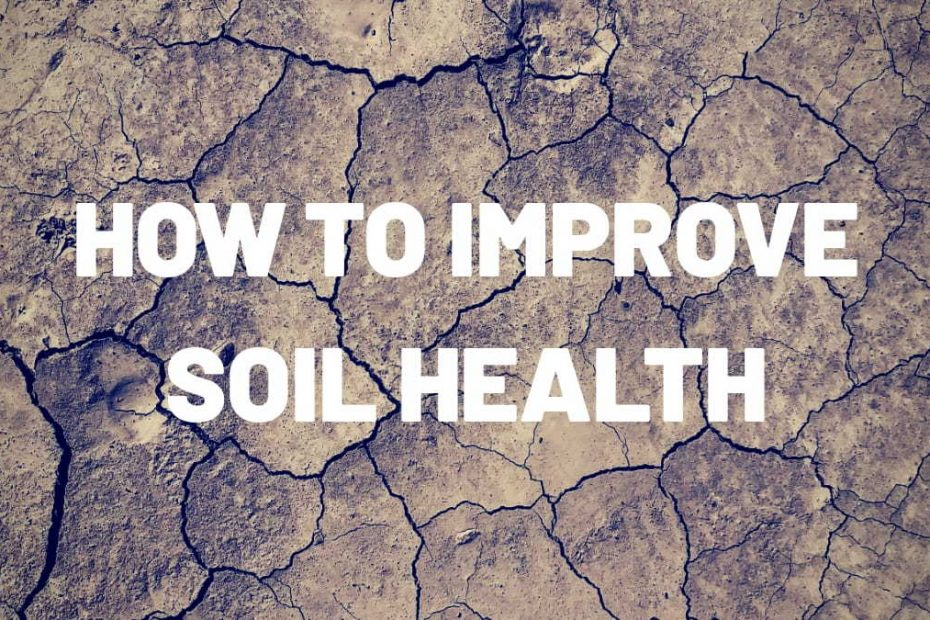 How to Improve Soil Health