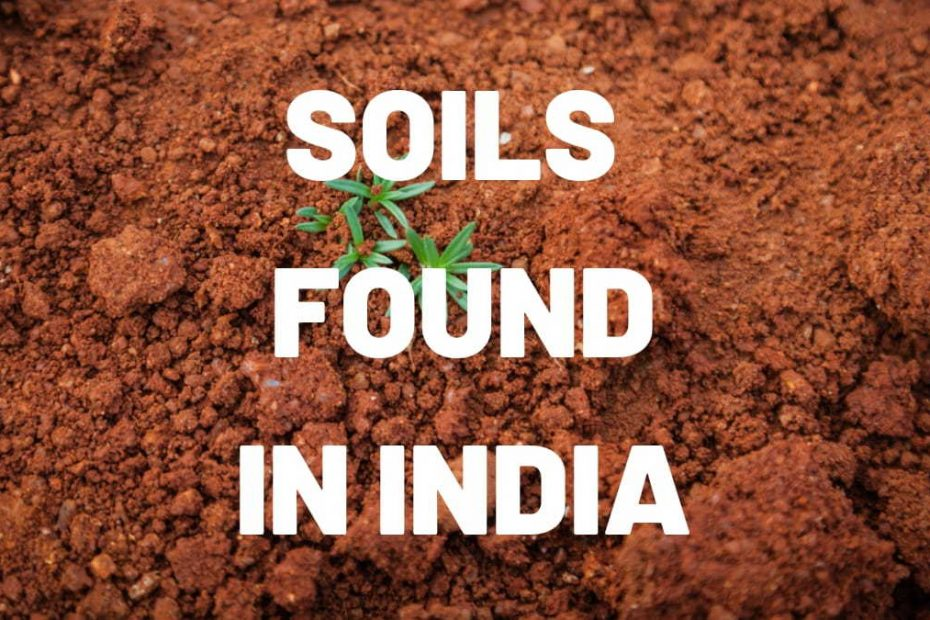 soils found in india